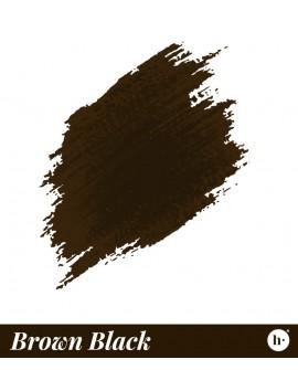 PMU & Hair Stroke Brown Black