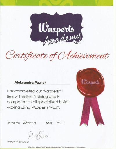 20 waxpert