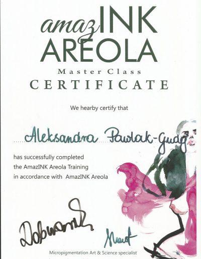 26 areola pigmentation